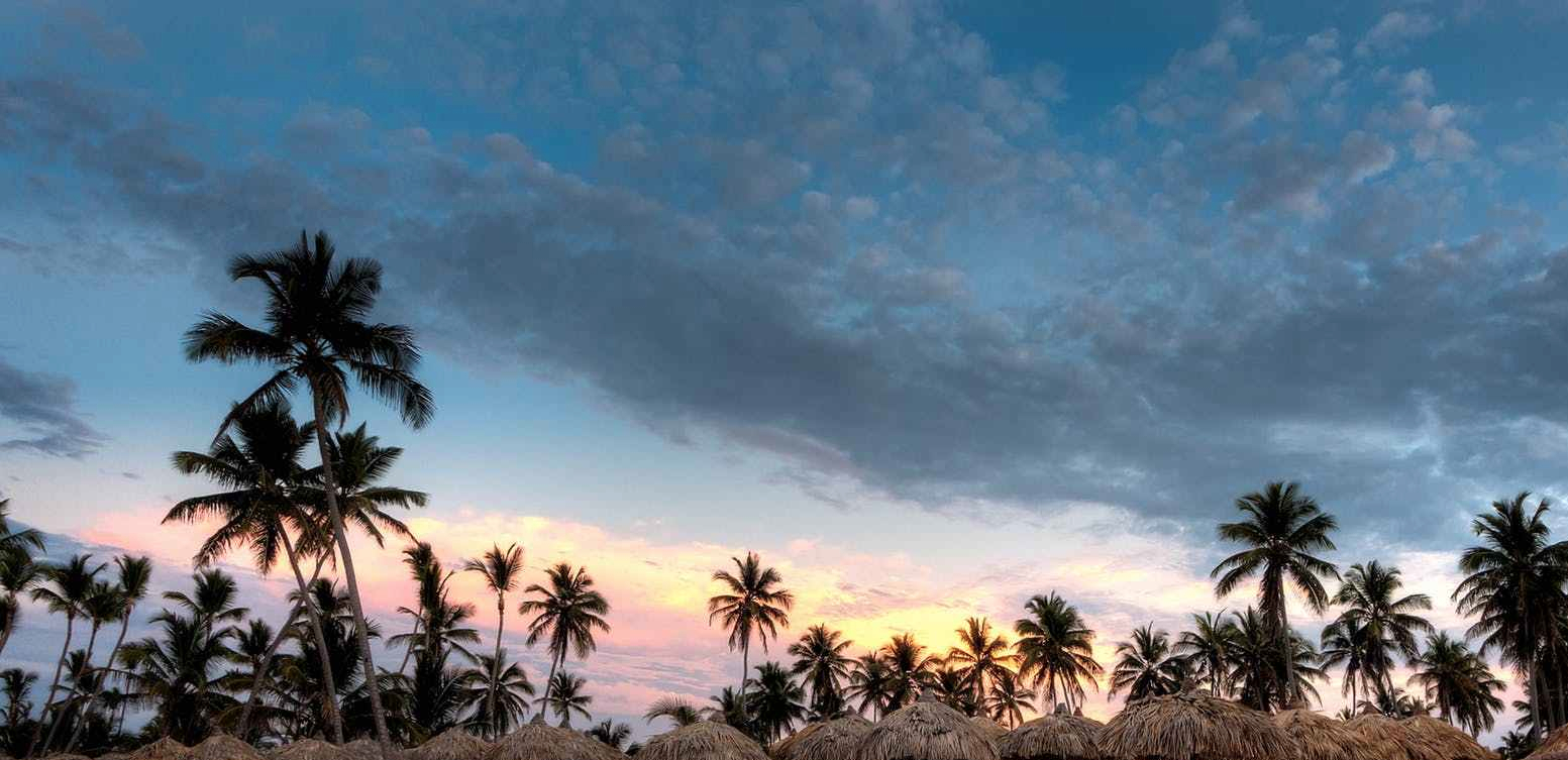 nipa hat surrounded with palm trees under white clouds and blue skies under orange sunset