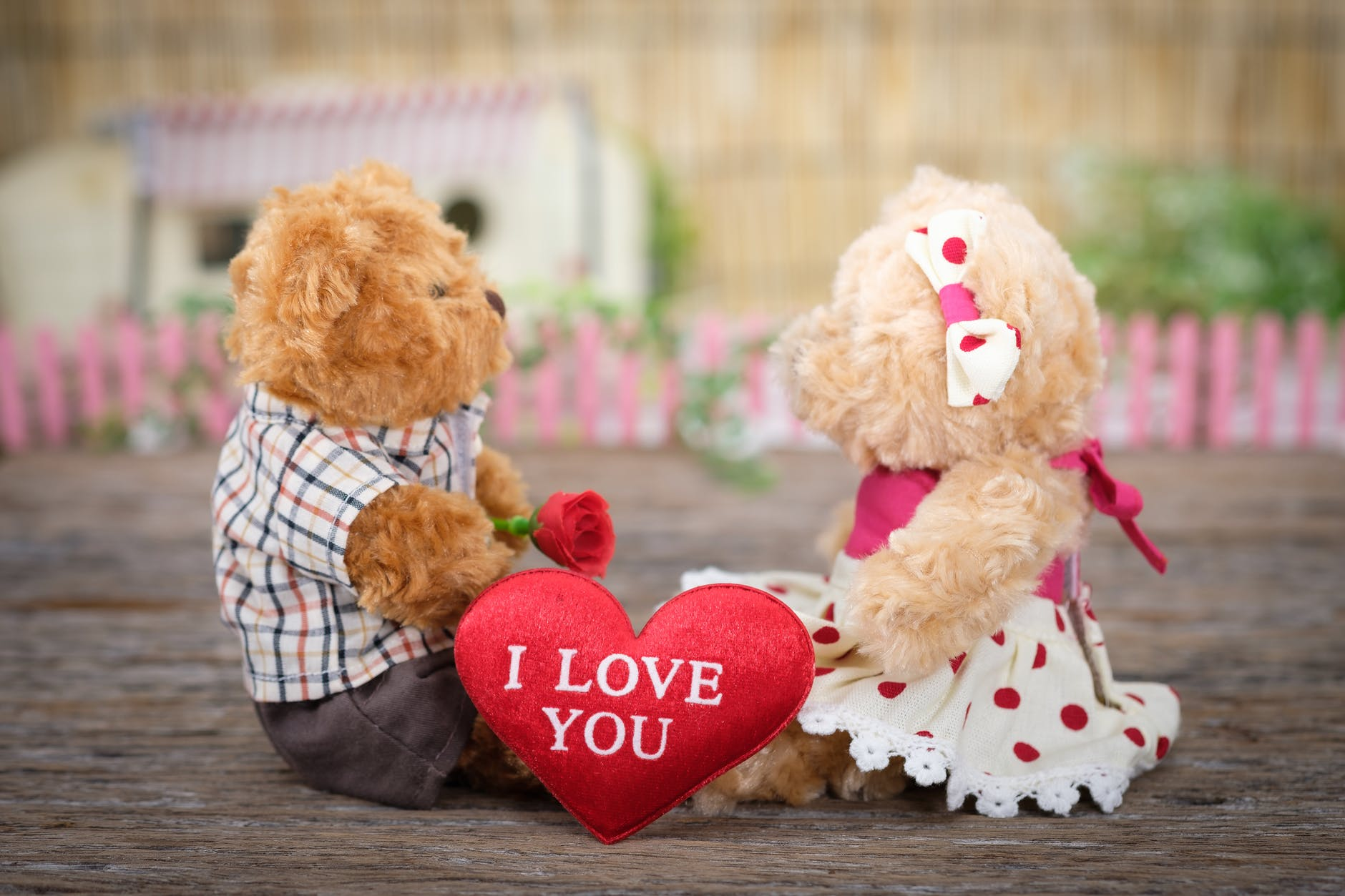 photo of teddy bears sitting on wood