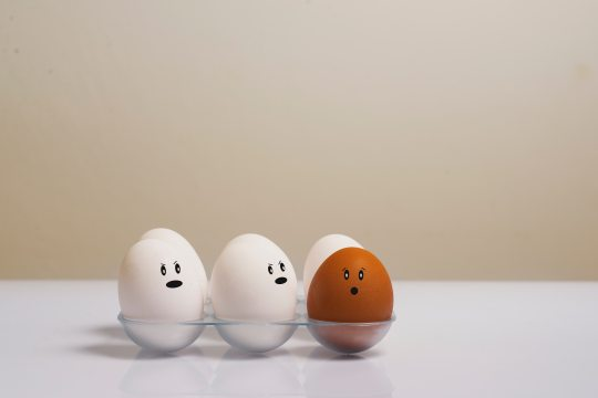 artsy-chicken-eggs-color-1556707