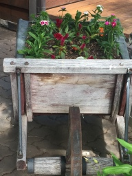 wheelbarrow - front