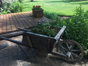 wheelbarrow- side