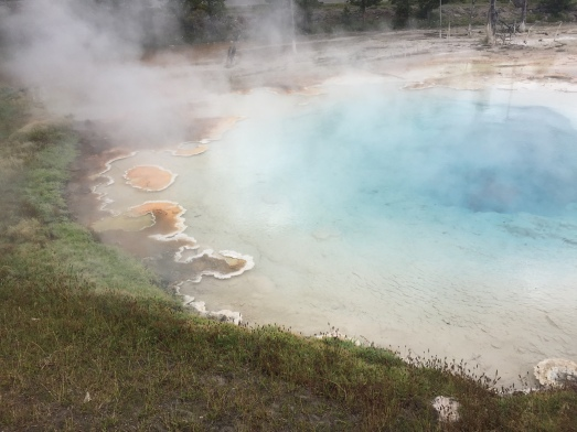 aqua steam pool