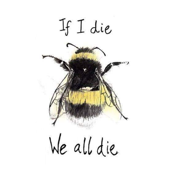 bee-die-all-die