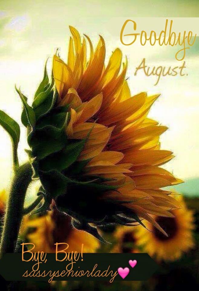 Goodbye August
