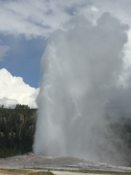 Old Faithful1