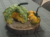 gourd - green:yellow