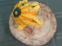 gourd - yellow
