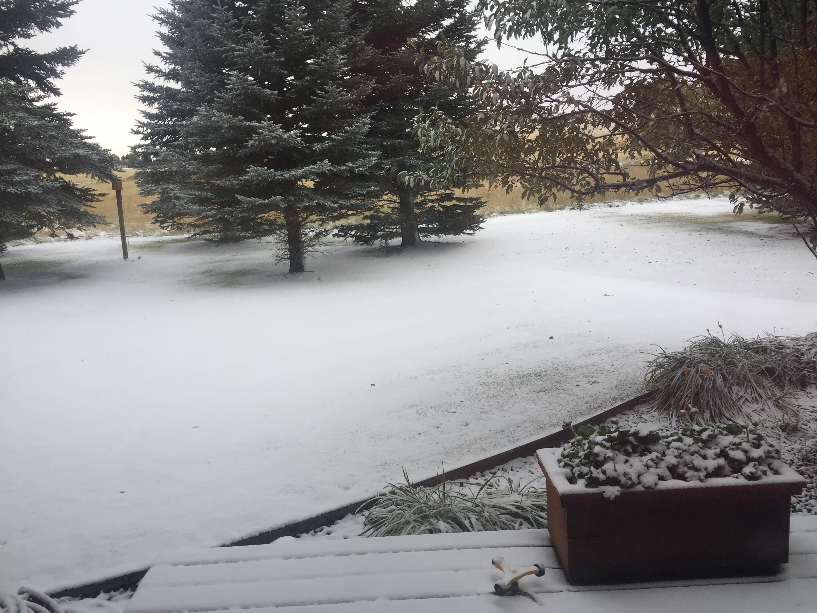September snow 1