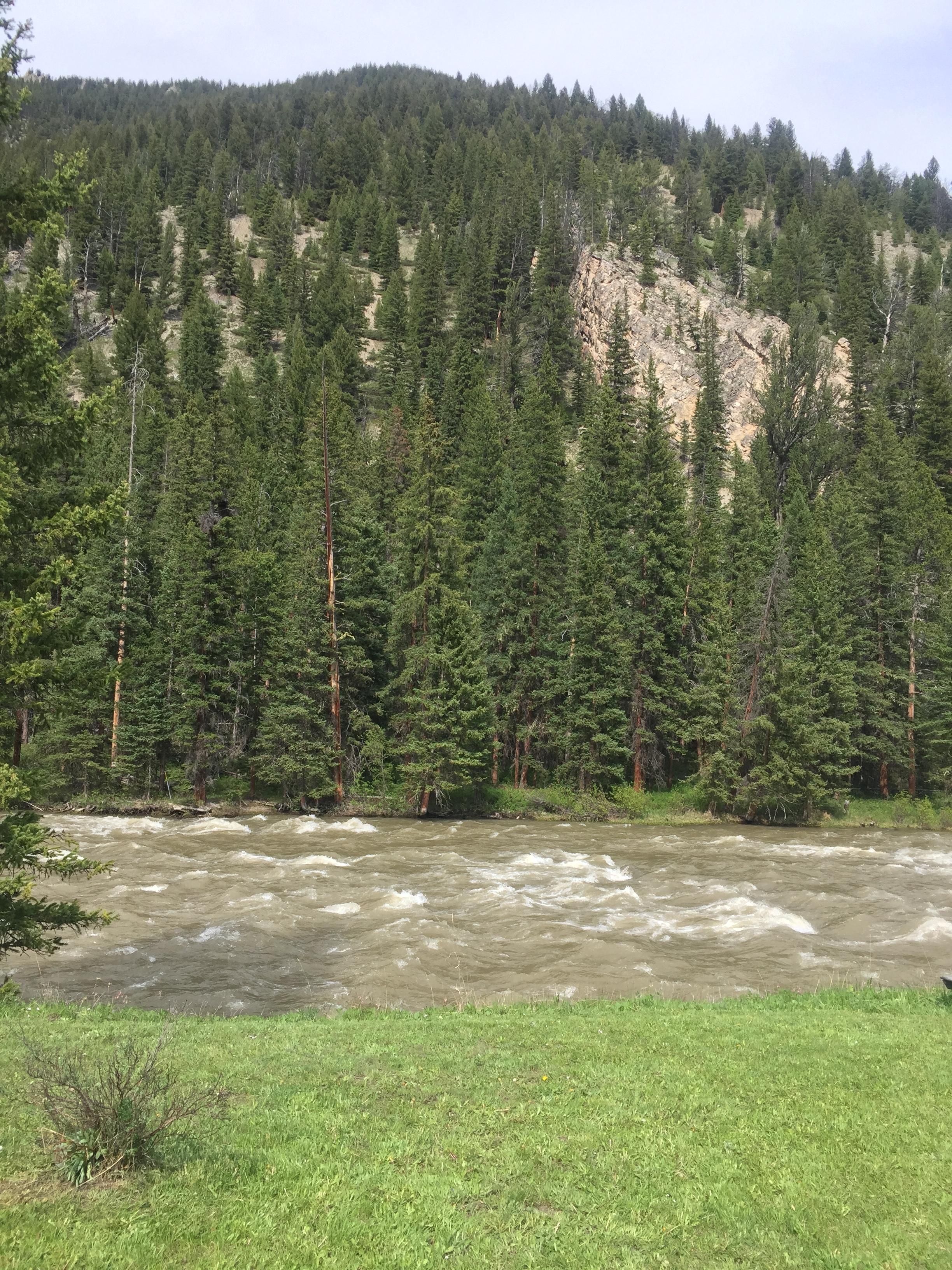 Pam's Galltin River view.JPG