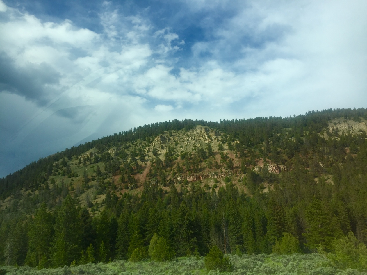 red rock hillside.jpg